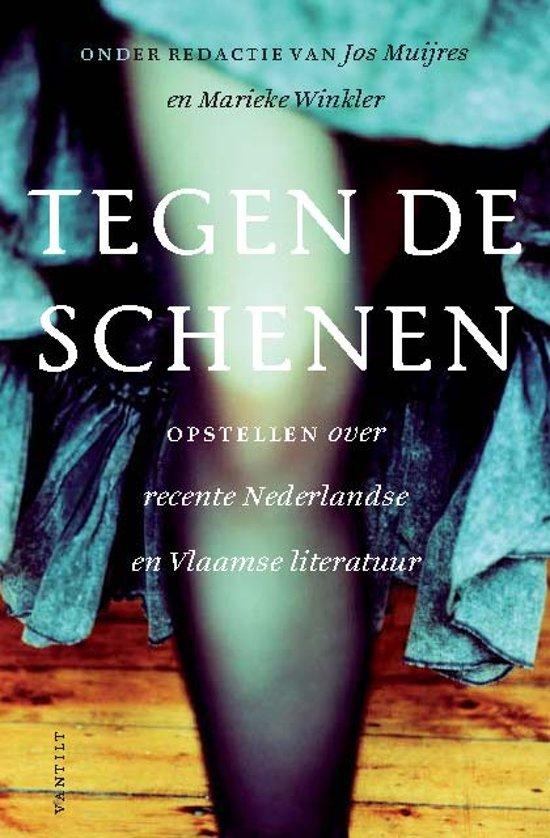 Tegen de schenen: Opstellen over recente Nederlandse en Vlaamse literatuur