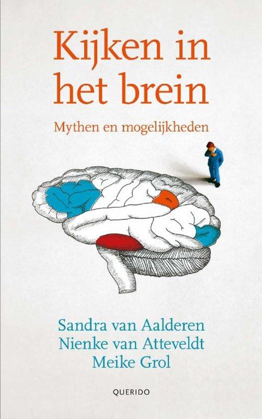 Kijken in het brein