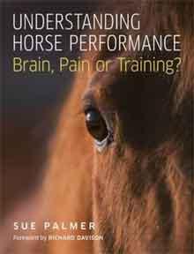 Understanding horse performance