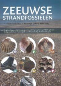 Zeeuwse strandfossielen - De Leesclub van Alles
