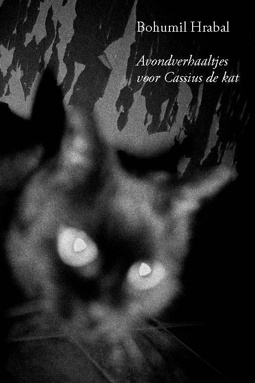 Avondverhaaltjes voor Cassius de kat